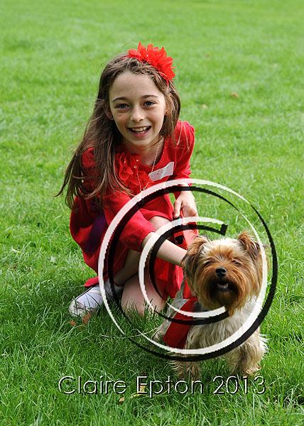 Dog agility show 27